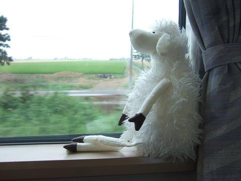 北海道2007.夏36.jpg